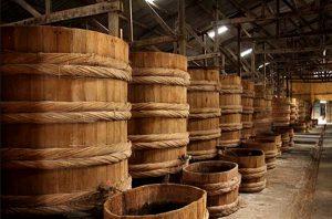 Nước mắm được ủ bằng thùng lều tại các cơ sở sản xuất lớn