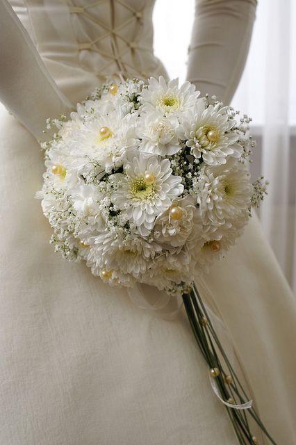 Ý nghĩa hoa cúc hoa cưới