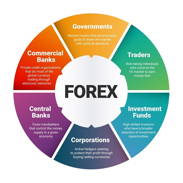 Hướng dẫn đầu tư Forex cho người mới bắt đầu