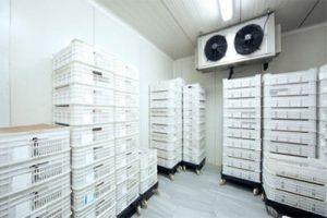 Lắp đặt kho lạnh tại Inox Hùng Cường