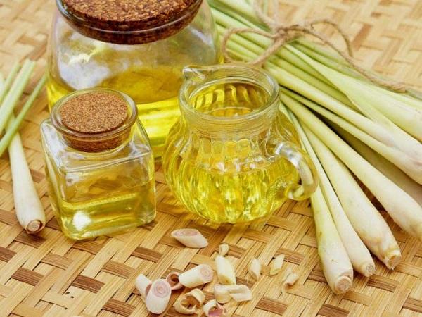 Những lưu ý quan trọng trước khi sử dụng tinh dầu sả chanh