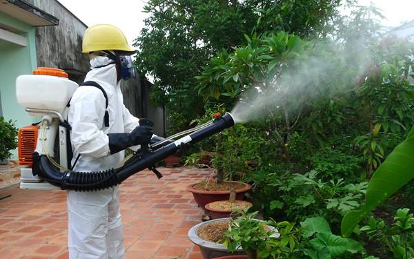 Các phương pháp diệt muỗi hiệu quả