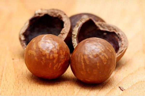 Các chất dinh dưỡng có trong hạt macca Tây Nguyên