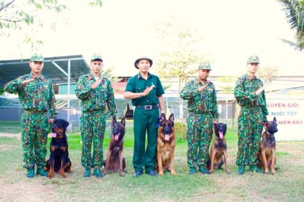 Đội ngũ nhân viên trung tâm huấn luyện chó Sài Gòn DTC