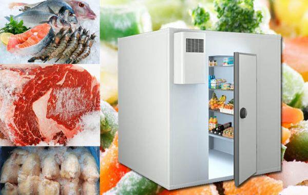 Kho đong lạnh thực phẩm được sử dụng rất nhiều