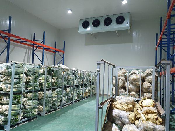 Kho đông lạnh nông sản giúp sản phẩm được dùng lâu hơn